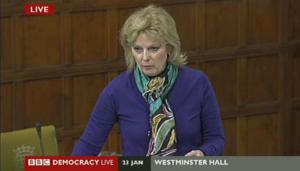 Anna_Soubry_Westminster_Hall