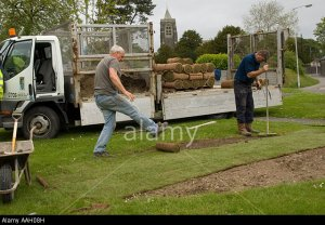 AAH08H Two local authority direct labour employees laying new turf   on lawn Lampeter Ceredigion Wales