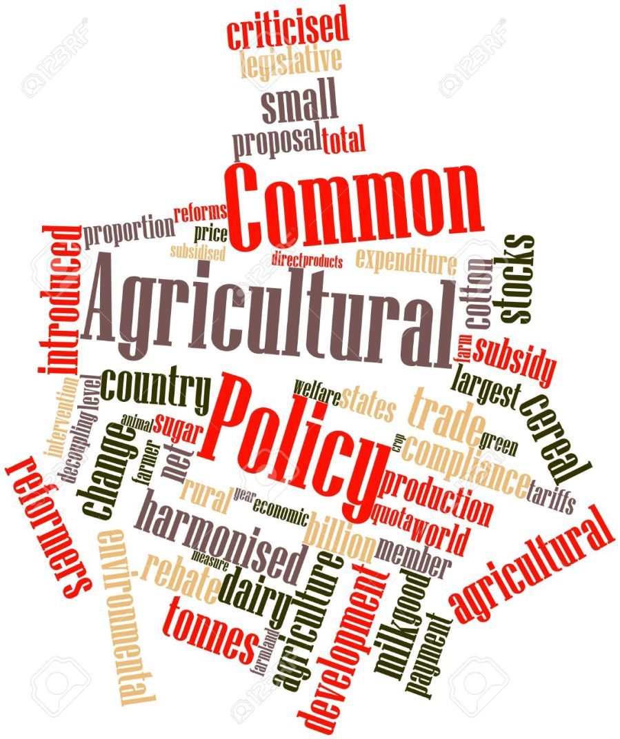16498591-Abstract-word-cloud-for-Common-Agricultural-Policy-with-related-tags-and-terms-Stock-Photo